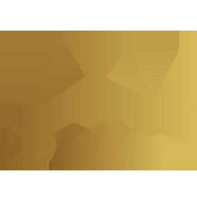 Skillvas Logo transparent